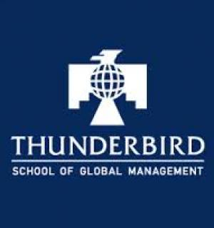 THUNDER BIRD INTERNATIONAL