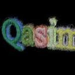 Qasim Jewellers