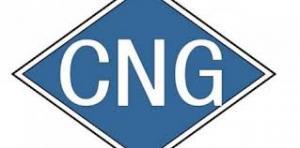 Gasoline CNG