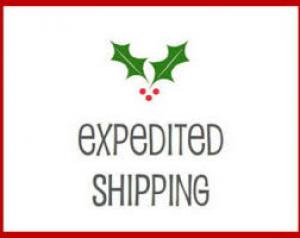 Expedite Shipping Solutions