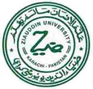 Zia-ud-Din University
