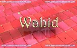 Wahid Mobile And Electronics
