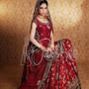 Ali Fashion Designer